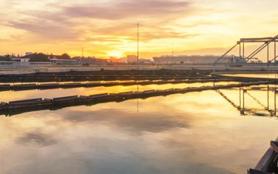 Phosphorus Removal from Wastewater: Pinpointing Your Plant's Approach